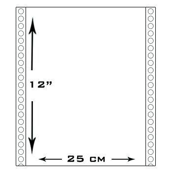 1000 Formularios Continuos medida 12¨x 25cm impreso a 1 color x duplicado
